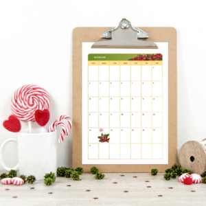 The Holiday Season & Christmas Planner