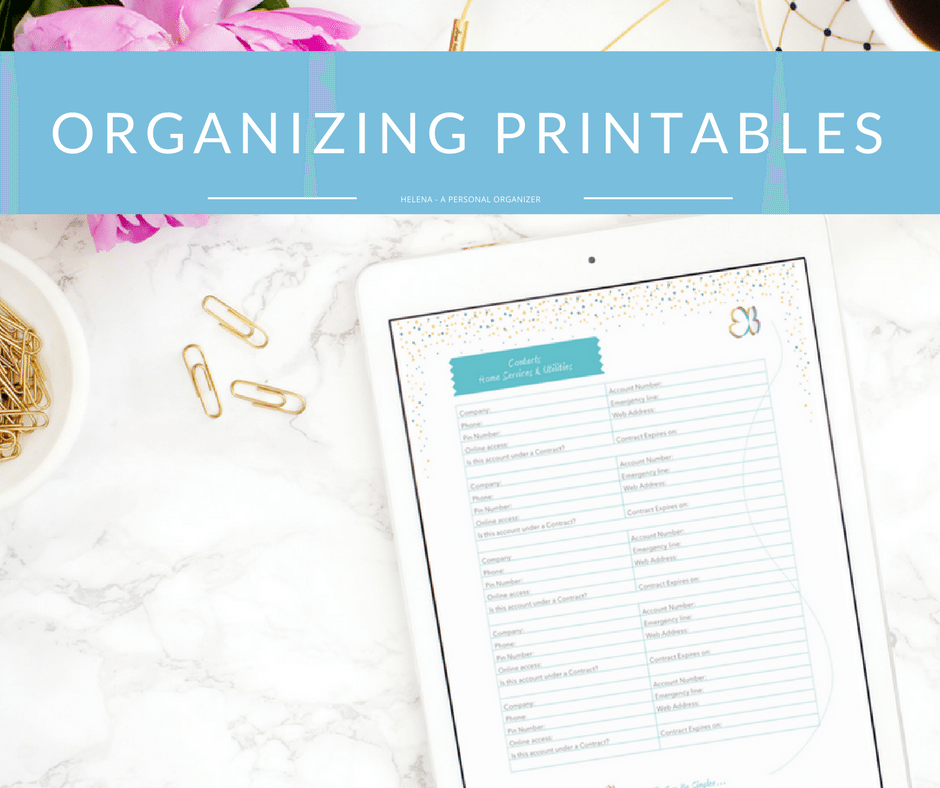 Fully editable PDF - Home Organizing Printables 2017
