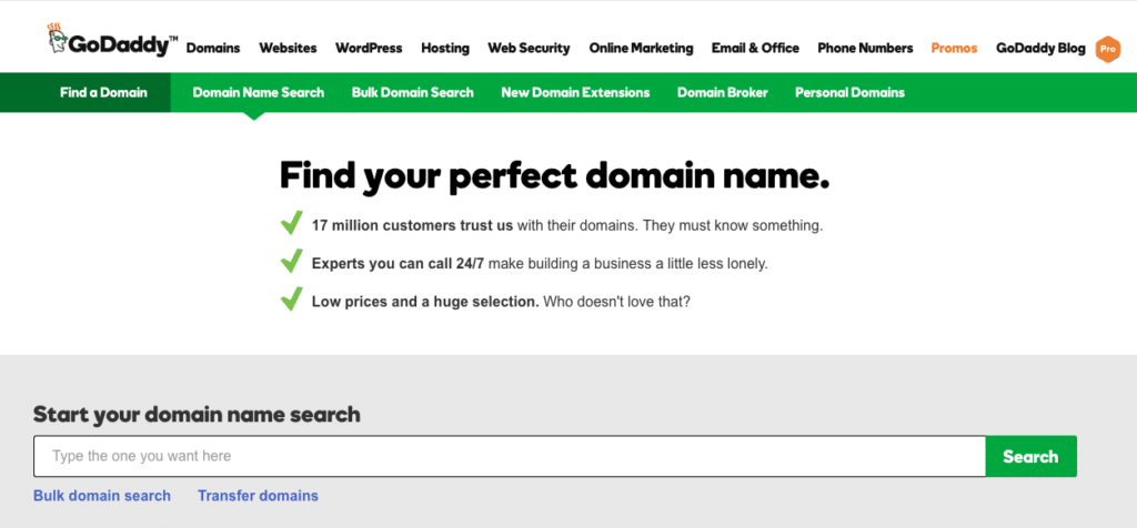 Find the perfect domain name for your professional organizing business.