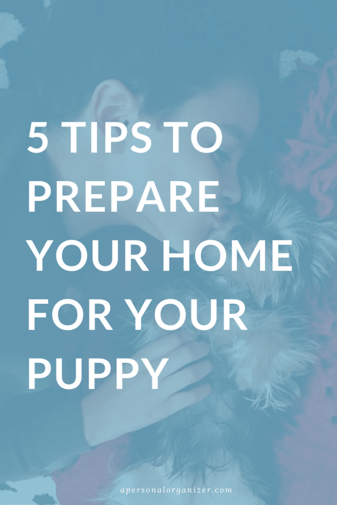 5 TIPS TO PREPARE YOUR HOME FOR YOUR PUPPY