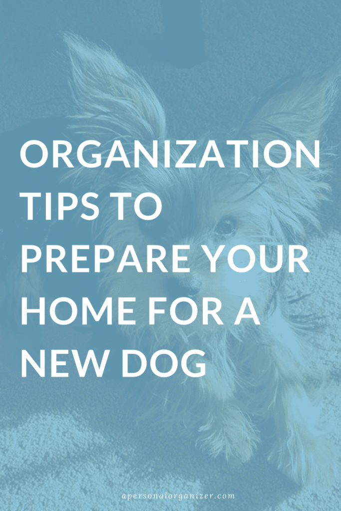 Organization Tips to Prepare Your Home for a New Dog