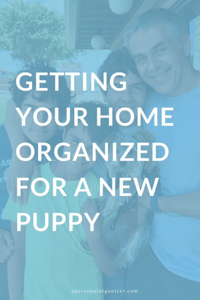 Organization tips to prepare your home and family for a new dog
