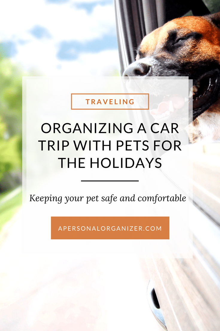 Keeping your pet safe and comfortable on your holiday travels. #pets #holidays