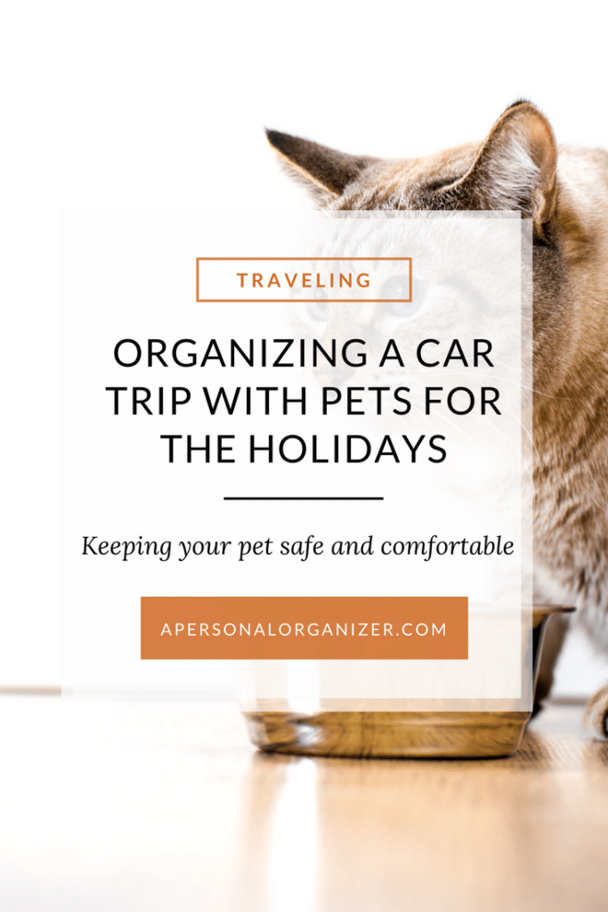 Tips for traveling with your pet this holiday season.
