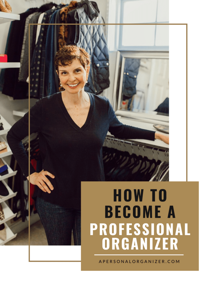 eBook How to Become a Professional Organizer by Helena Alkhas.